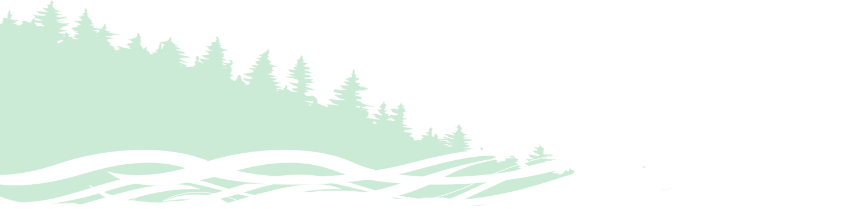 Картинка дерева
